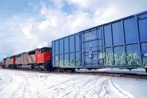 Железнодорожные перевозки грузов в России