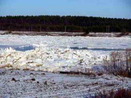 В Закарпатской области паводковая волна подтопила автомобильную дорогу