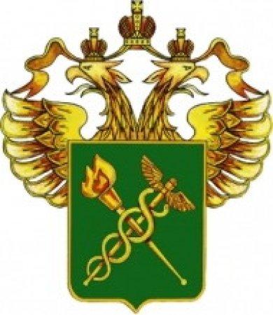 Таможенников Санкт-Петербурга сносит товарным потоком