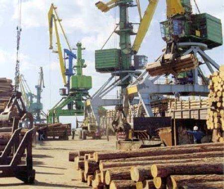Грузооборот Большого порта Санкт-Петербург постепенно выходит на показатели прошлого года